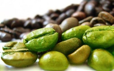 Green Coffee Bean Oil for Cellulite