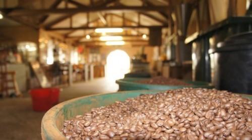 Tanna Coffee Beans