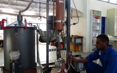 The distillation of The Summit sandalwood oil