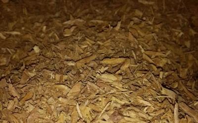 Sandalwood powder (Santalum austrocaledonicum)