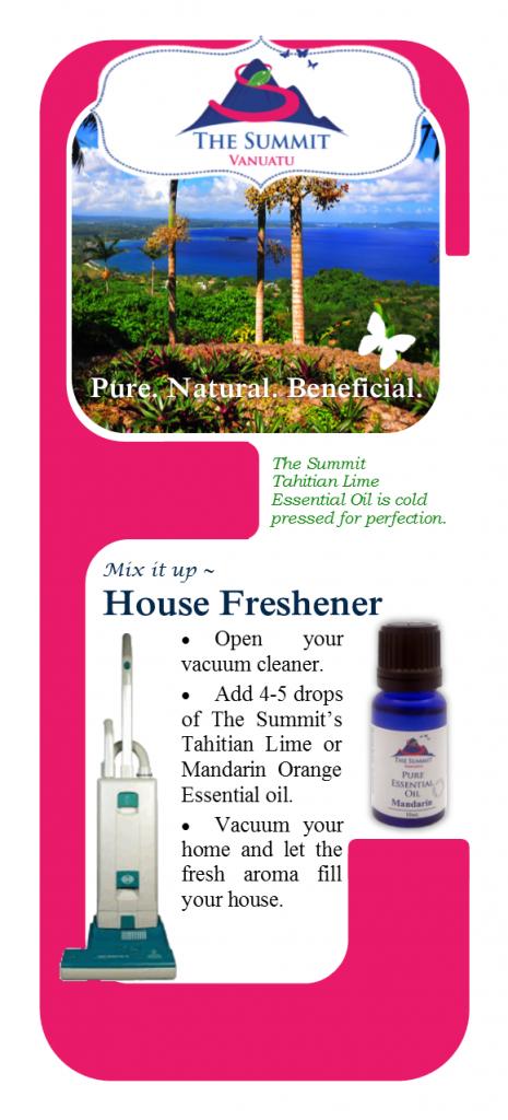 Essential Oil Vacuum Freshner