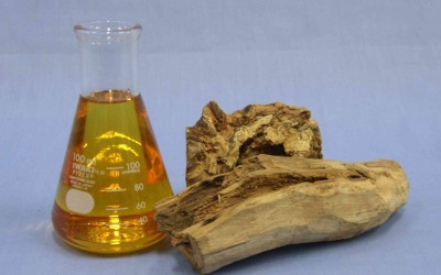 Sandalwood Oil For Warts